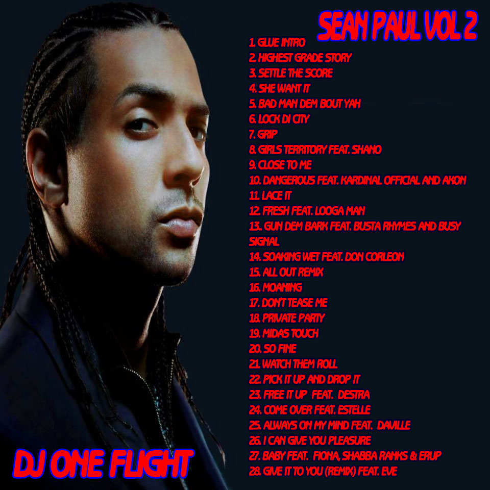 sean paul can you do the work:
